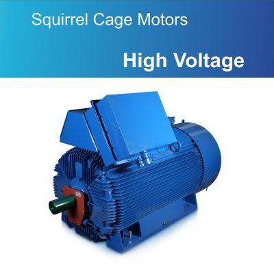 Squirrel Cage Motors High Voltage