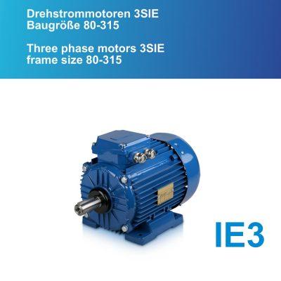 Betirebsanleitung Drehstrommotoren 3SIE