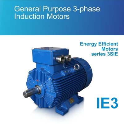 General Purpose 3-phase Induction Motors